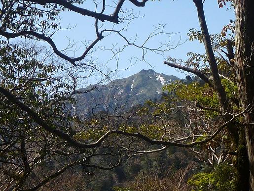 縄文杉コースから望む宮浦岳