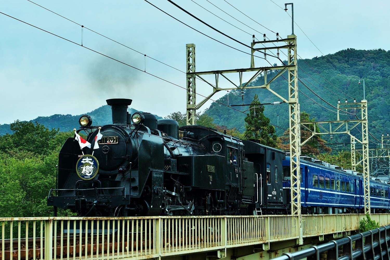P1160589 (1500x1000)