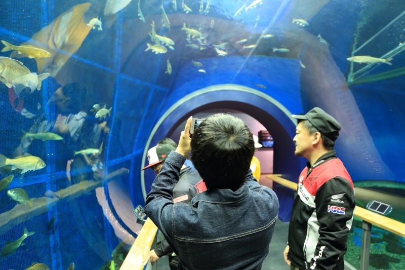 5O9A3203琵琶湖チャレンジ