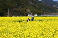 ss20190315_haraduru.jpg