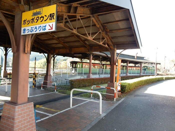 DSCN6703.jpg
